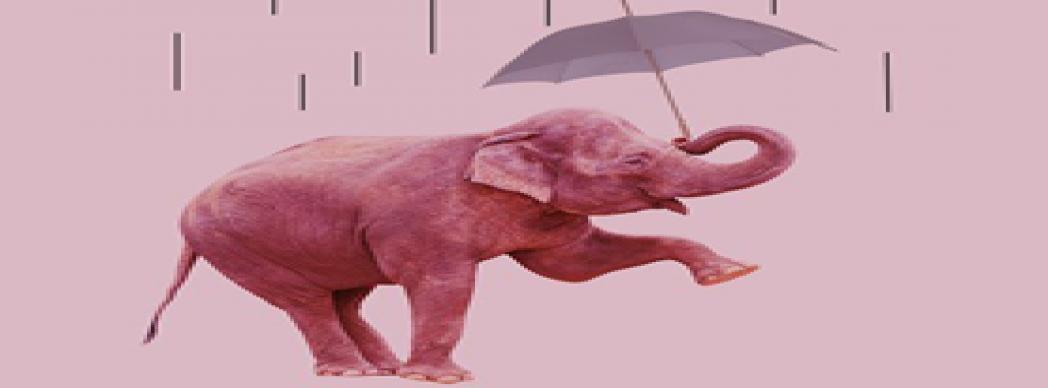 """Teatro infantil: """"30 elefantes bajo un paraguas"""""""