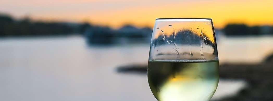 Cata de vino blanco