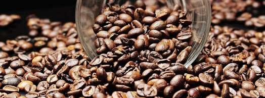 Cata de café