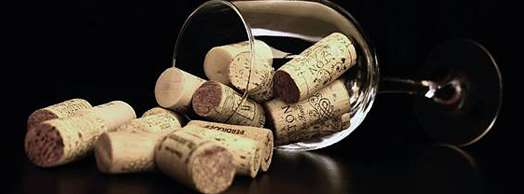 Cata de Vinos Rosados Ecológicos en Chez Belagua