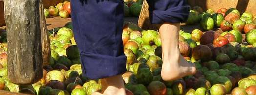 Día de la Sidra en Lekunberri 2020