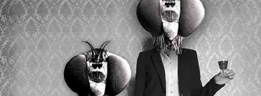 El baile de las moscas