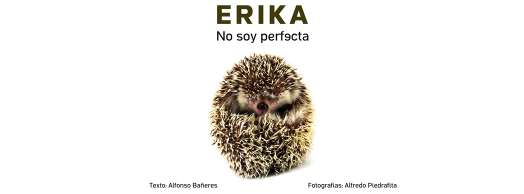Erika. No soy perfecta