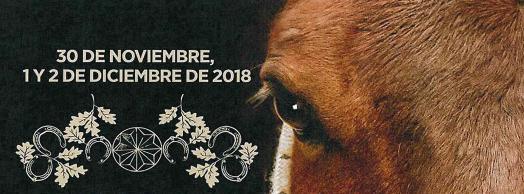 Ferias de San Andrés en Estella/Lizarra 2018