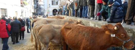 Ferias de Otoño en Lesaka