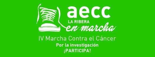 IV Marcha Contra el Cáncer 'Por la investigación' en Tudela