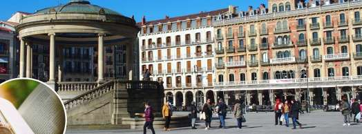Visita guiada histórica y literaria por Pamplona